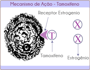 Tamoxifeno e o câncer de mama