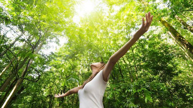 O contato com a natureza