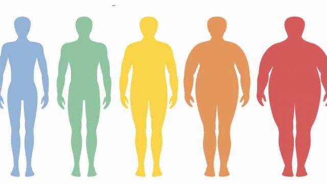 Pesquisadores da University of Tennessee Health Science Center – UTHSC publicam novas descobertas sobre como a obesidade afeta os tratamentos de câncer